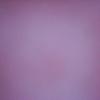 Mihriban Zehra Çuhadar kullanıcısının profil fotoğrafı
